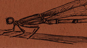 Damselfly Bookmark