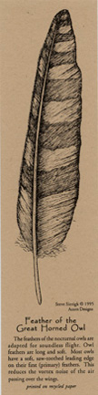 Feather of the Great Horned Owl Bookmark