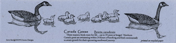 Canada Geese Bookmark