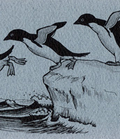 Adelie Penguins Bookmark