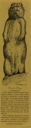 Prairie Dog Bookmark