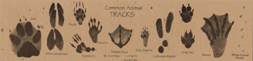 Animal Tracks Bookmark