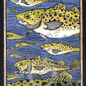 Atlantic Cod Notecard