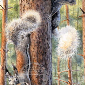 A Tale of Two Squirrels Notecard