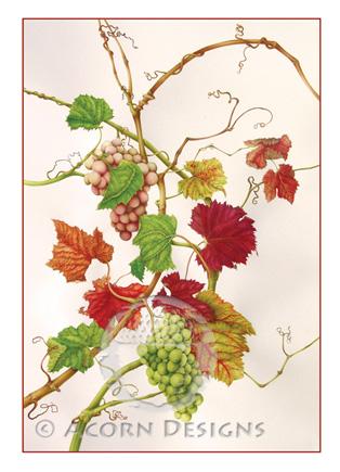 Grapes Notecard