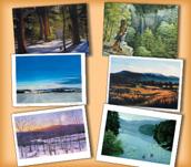 Landscapes Assortment