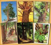 Trees Assortment