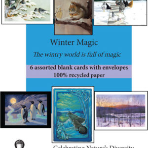Winter Magic Assortment