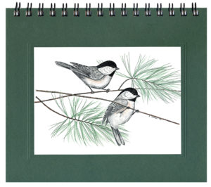Black-capped Chickadees Journal