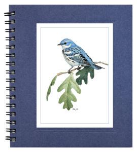 Cerulean Warbler Notecard