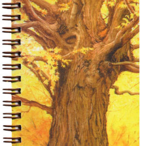 Cover image - Ancient Spirit Mini Journal