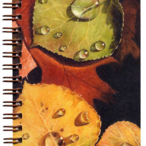 Cover image - Autumn Leaves Mini Journal
