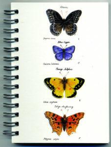 Cover image - Butterflies Mini Journal