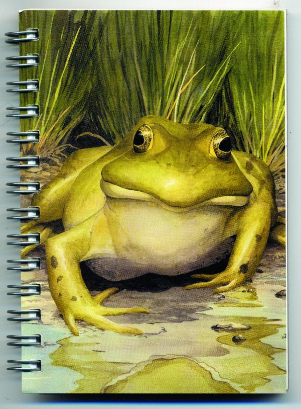 Cover image - Bullfrog Mini Journal