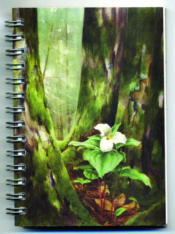 Cover image - Trillium Mini Journal