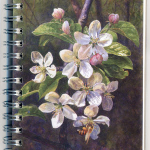 Cover image - Crabapples Mini Journal