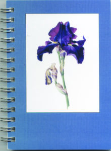Cover image - Bearded Iris Mini Journal