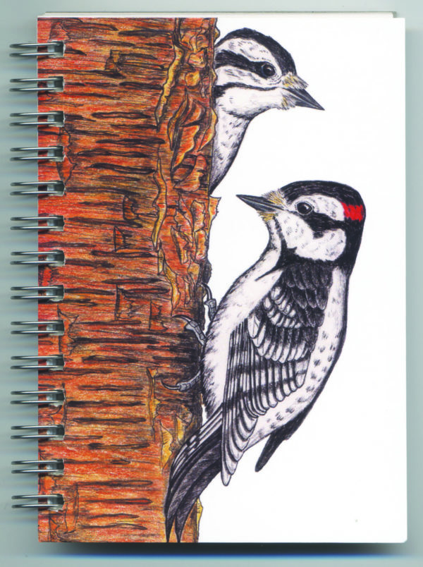 Cover image - Downy Woodpeckers Mini Journal
