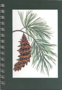 Cover image - White Pine Mini Journal