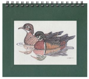 Wood Ducks Notecard