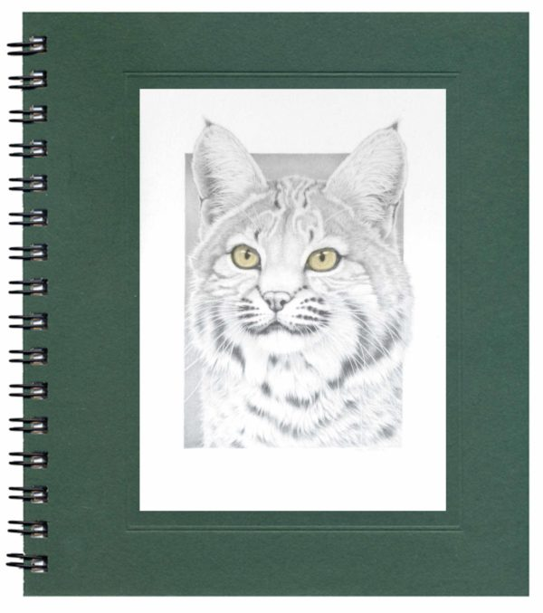 Bobcat Notecard