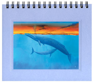 Blue Whale Bargain Notecard