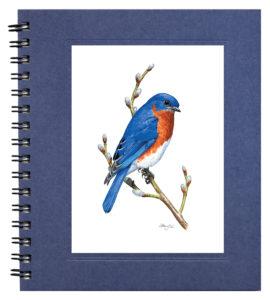 Eastern Bluebird Notecard