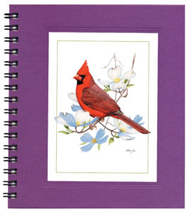 Cardinal on Dogwood Notecard