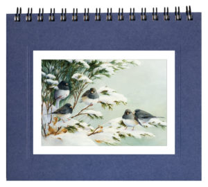 Juncos in Snow  Notecard