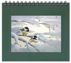 Chickadee Courtship Journal